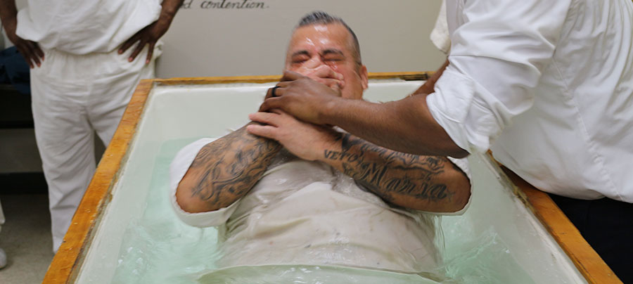 baptized, baptism, new life, declare faith, baptize, raised, raising up,